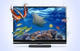 Тонкие LED - телевизоры Samsung